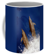 Bottlenose Dolphins Tursiops Truncatus Coffee Mug by Anonymous