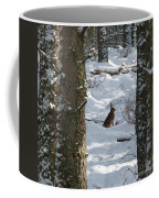 Brown Hare - Snow Wood Coffee Mug by Phil Banks