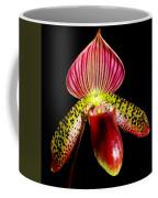 Burgundy Lady Slipper Coffee Mug by Karen Wiles