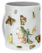 Butterflies Moths And Other Insects With A Sprig Of Apple Blossom Coffee Mug by Jan Van Kessel