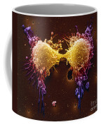 Cancer Cell Division Coffee Mug by SPL and Photo Researchers