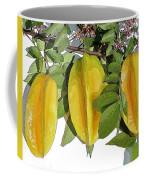 Carambolas Starfruit Three Up Coffee Mug by Olivia Novak