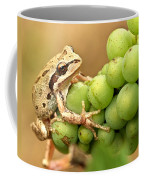 Catching A Ride On The Pinot Coffee Mug by Jean Noren