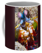 Close-up View Of A Mantis Shrimp Coffee Mug by Steve Jones