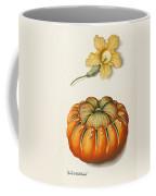 Courgette And A Pumpkin Coffee Mug by Joseph Jacob Plenck
