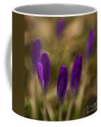crocus II - sun Coffee Mug by Hannes Cmarits