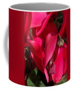 Cyclamen Coffee Mug by Kathy McClure