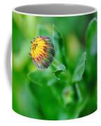 Daisy Bud Ready To Bloom Coffee Mug by Kaye Menner