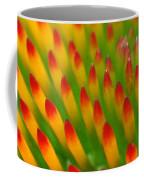 Deciphering Close Coffee Mug by Christina Rollo
