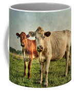 Engagement Session Coffee Mug by Darren Fisher
