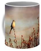 Evening Mocking Bird Coffee Mug by Darren Fisher