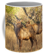 Evening Sets On The Elk Coffee Mug by Robert Frederick