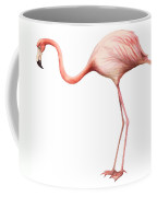 Flamingo Coffee Mug by Anonymous