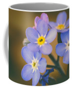 Forget Me Nots Coffee Mug by Marco Oliveira