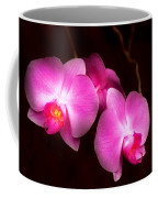 Flower - Orchid - Better In A Set Coffee Mug by Mike Savad