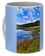 Fly Pond In The Adirondacks II Coffee Mug by David Patterson