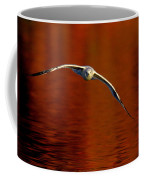 Flying Gull On Fall Color Coffee Mug by Robert Frederick