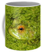 Frog In Single Celled Algae Coffee Mug by Optical Playground By MP Ray