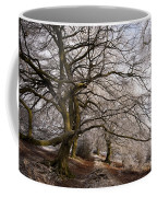 Frosted Path Coffee Mug by Anne Gilbert