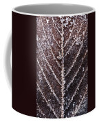 Frozen Leaf Coffee Mug by Anne Gilbert