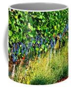 Fruit Of The Vine Coffee Mug by Kay Gilley