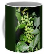 Grapes On The Vine Coffee Mug by Carol Groenen