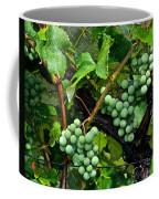 Growing Season Coffee Mug by Frozen in Time Fine Art Photography