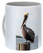 Handsome Brown Pelican Coffee Mug by Carol Groenen