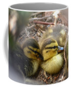Hidden Coffee Mug by Deb Halloran