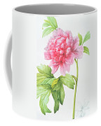 Japanese Tree Peony Coffee Mug by Pierre Joseph Redoute