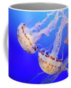 Jellyfish 9 Coffee Mug by Bob Christopher