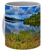 Lake Abanakee At Indian Lake New York Coffee Mug by David Patterson