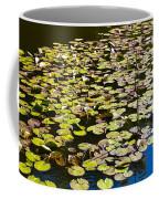 Lilly Pads Coffee Mug by David Pyatt