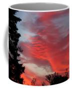 Lobster Sky Coffee Mug by Barbara Griffin