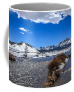 Looking Up The Salmon River Coffee Mug by Robert Bales