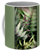 Magical Forest 3 Coffee Mug by Karen Wiles