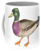 Mallard Coffee Mug by Anonymous