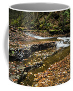 Meandering Waters Coffee Mug by Christina Rollo