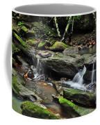 Mini Waterfalls Coffee Mug by Kaye Menner