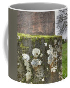 Moldy Above And Below Coffee Mug by Jean Noren