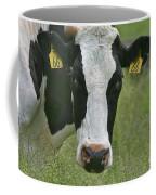 Moo Moo Eyes Coffee Mug by Deborah Benoit