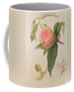 Noblesse Peach Coffee Mug by William Hooker