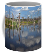 Orlando Wetlands Cloudscape 5 Coffee Mug by Mike Reid