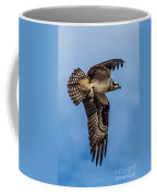 Osprey Flying Away Coffee Mug by Robert Bales