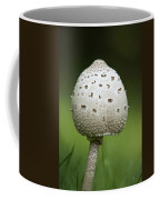Parasol Mushroom Coffee Mug by Christina Rollo