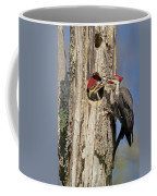 Pileated Woodpecker And Chick Coffee Mug by Susan Candelario