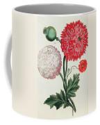 Poppy Coffee Mug by Basilius Besler