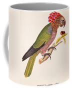 Psittacus Accipitrinus Coffee Mug by German School