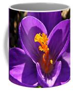 Purple Crocus Detail Coffee Mug by Chris Berry