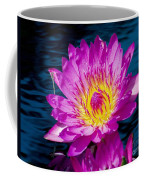 Purple Lily On The Water Coffee Mug by Nick Zelinsky